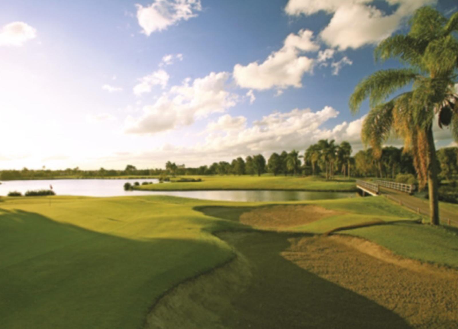 海外・パームメドウズ ゴルフコース